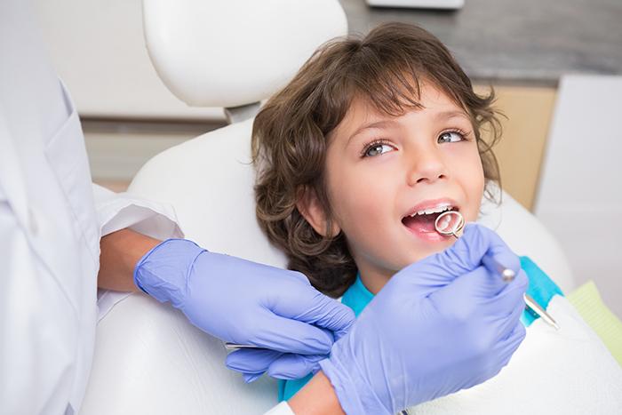 Fases y tipos de dientes